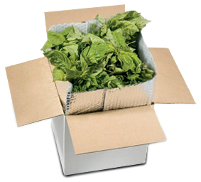 Insulated Shipping for Herbs
